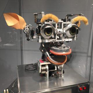 Le robot Kismet, MIT Museum, 2015, © J. Becker.